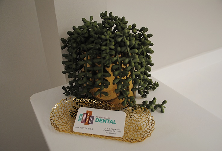 Plant and business cards on reception desk